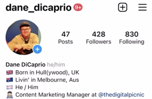 This is a screenshot of Danes IG bio showing his pronouns he/him after his account name which is a new feature on IG